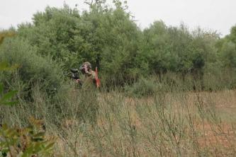 KTV Mallorca 2011 159