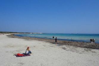 KTV Mallorca 2011 114