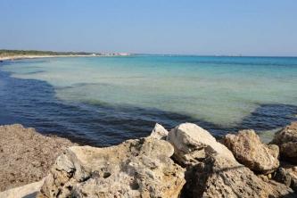 KTV Mallorca 2011 116