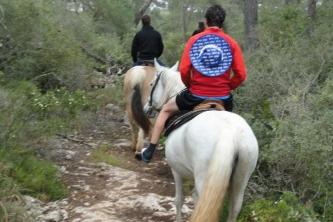 KTV Mallorca 2011 221