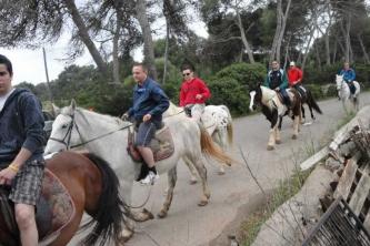 KTV Mallorca 2011 225