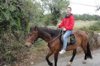 KTV Mallorca 2011 242