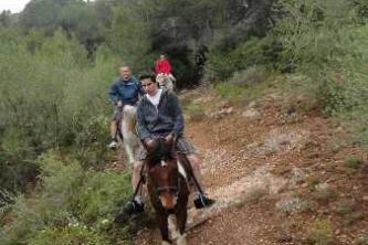 KTV Mallorca 2011 219