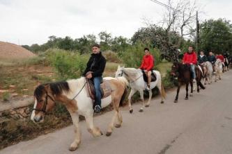 KTV Mallorca 2011 229