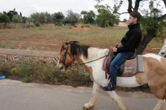 KTV Mallorca 2011 230