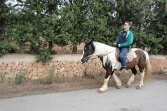 KTV Mallorca 2011 236